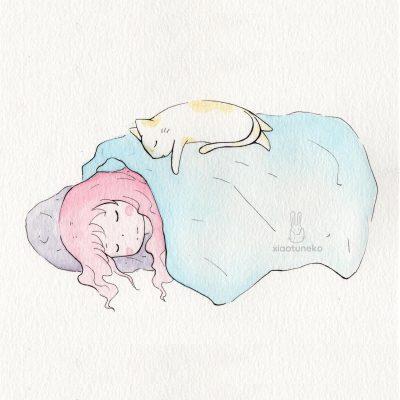 Slumber Cat Xiaotuneko